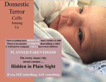 planned-parenthood-domestic-terror-cells