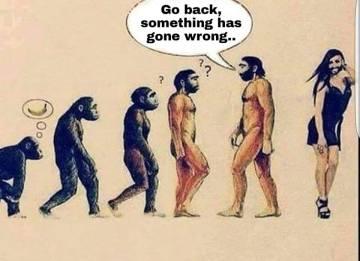 evolution-and-transgender