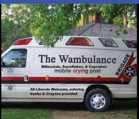 zombie-sorosian-pacifier-wambulance