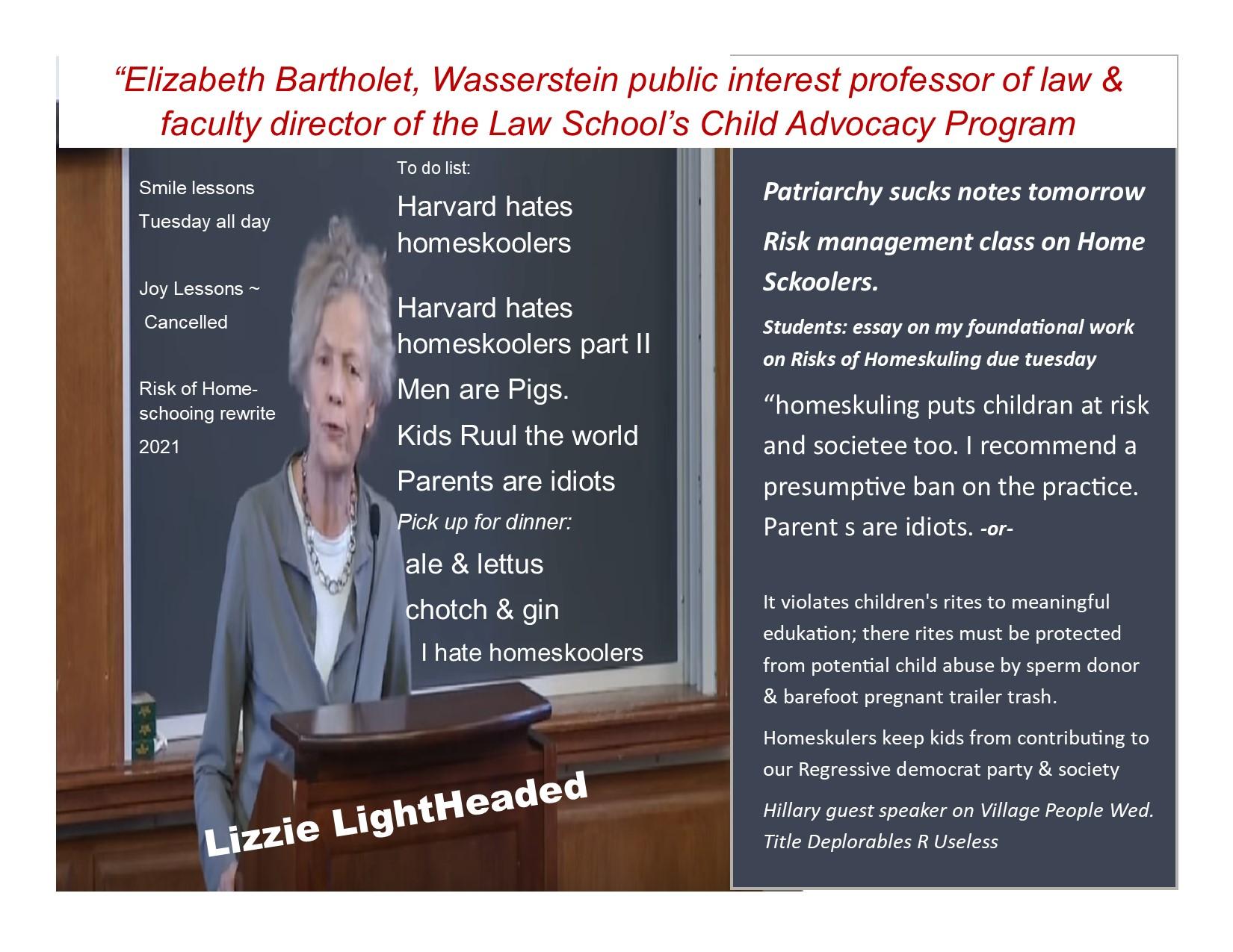 lizzie the lightheaded modified covid homeschooling