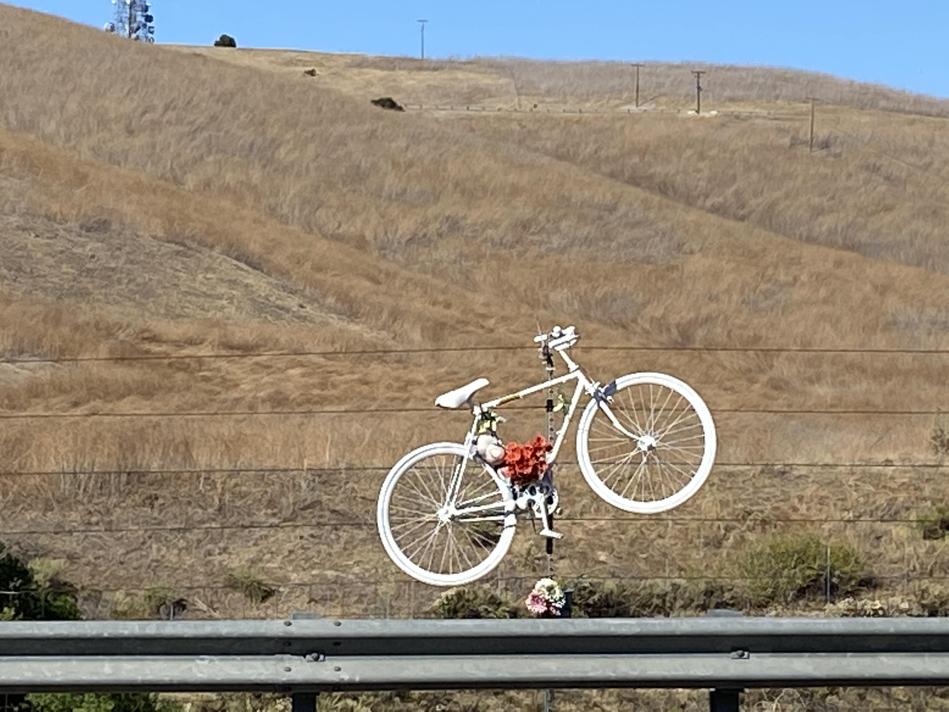 bike death